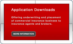 application downloads image